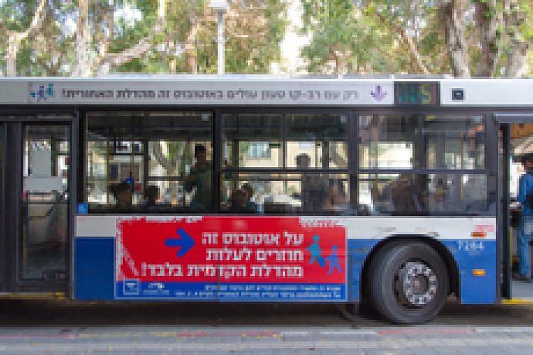 אוטובוס. צילום: יולי גורודינסקי