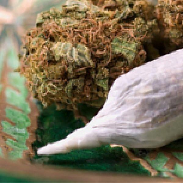 ג'וינט. קנאביס. מריחואנה. צילום: Shutterstock