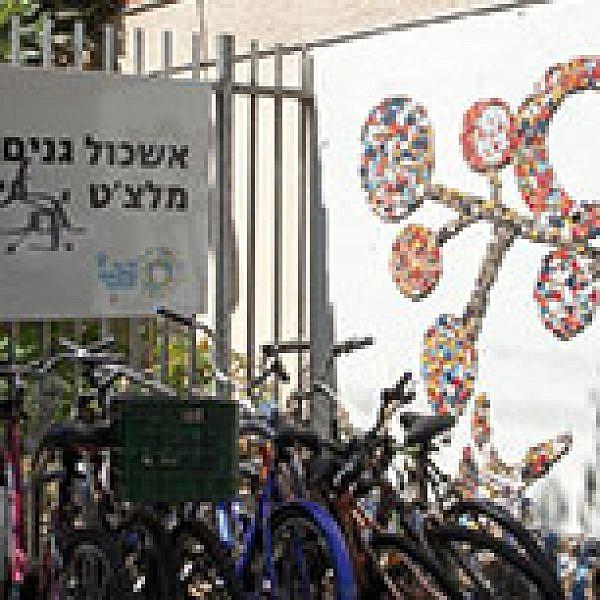 אשכולית הגנים ברחוב מלצ'ט. צילום: איליה מלניקוב