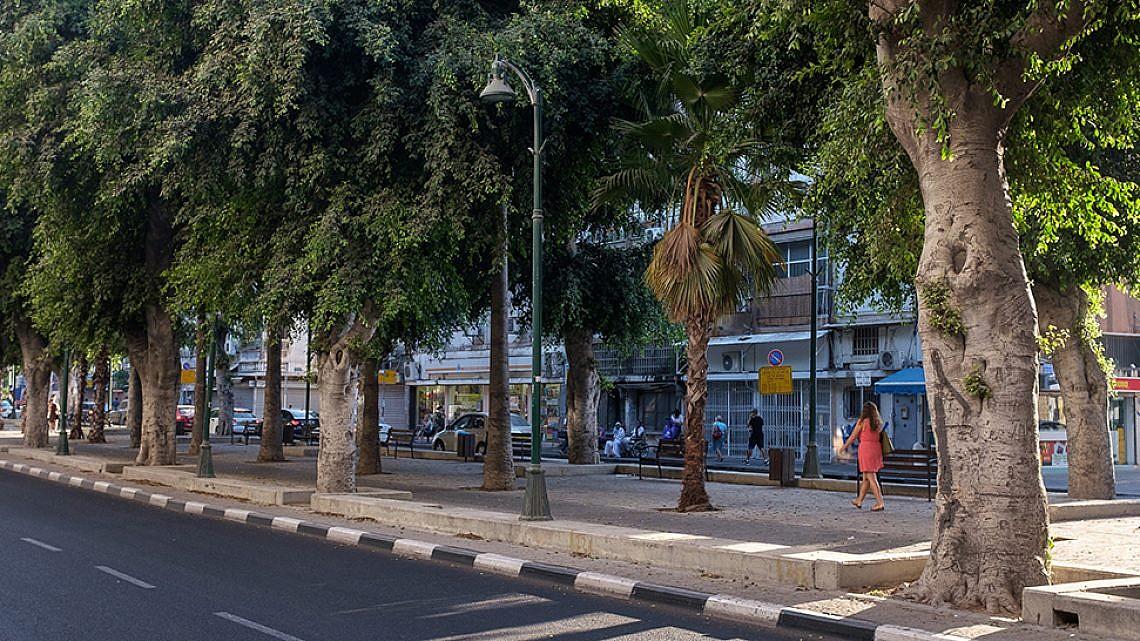 שדרות ירושלים ביפו (צילום: יולי גורודינסקי)