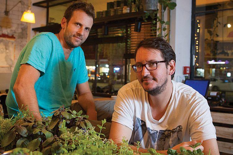 האחים דוקטור (צילום: אנטולי מיכאלו)