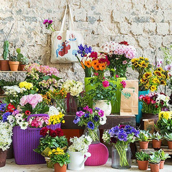 שוק הפרחים. צילום: שרית גופן