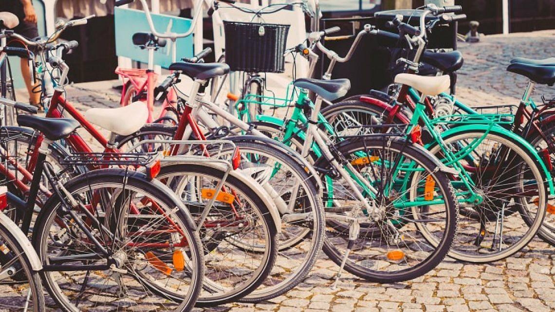 אופניים (צילום: shutterstock)