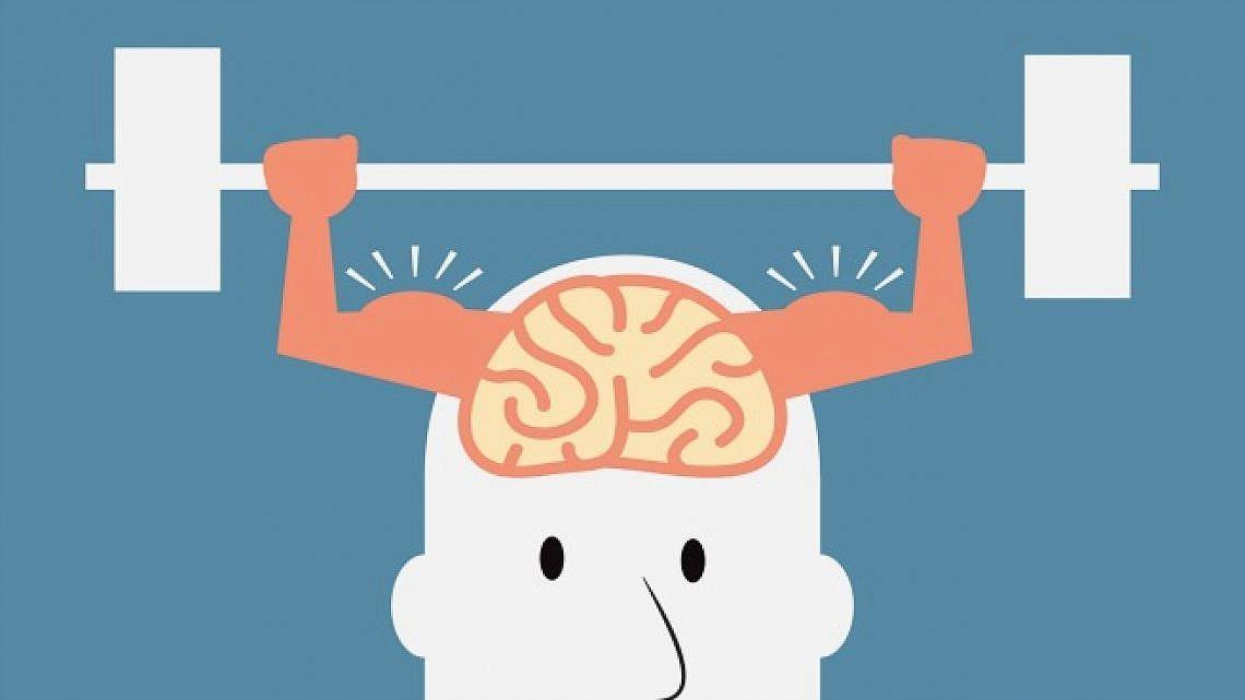 אימון מוחי (איור: shutterstock)