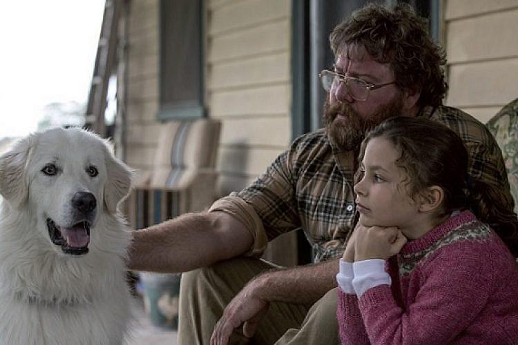 """יש פה כלב. מה עוד אתם צריכים? """"אודבול"""""""