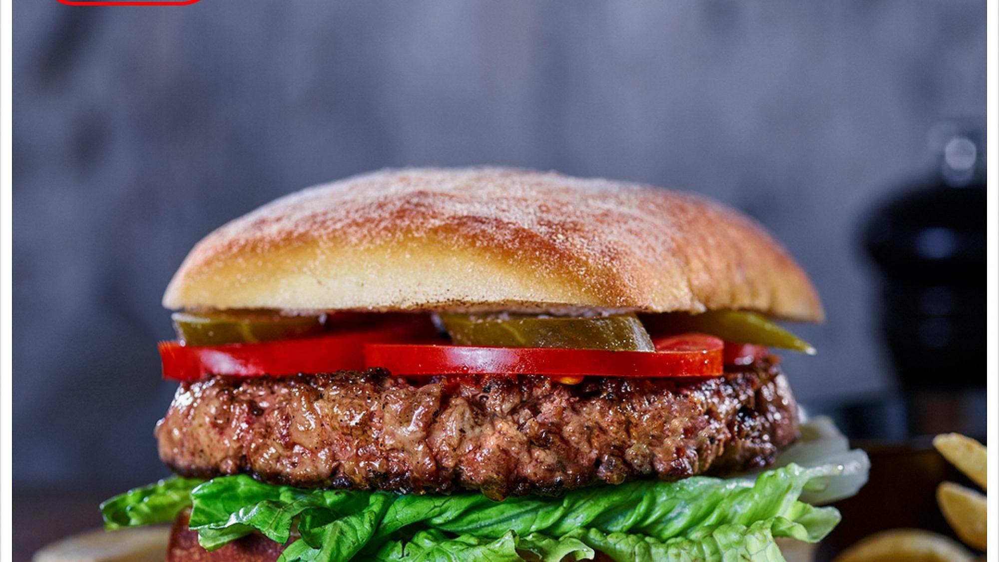 המבורגר חוק וצ'דר של הדסון – בעל הקציצה הטובה ביותר (צילום: דן פרץ)