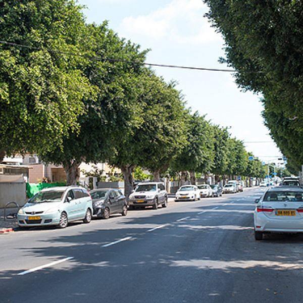 רחוב ישראל גורי, קריית שלום (צילום: יולי גורודינסקי)