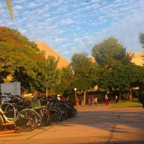 אוניברסיטת תל אביב. צילום: דורי בן אלון