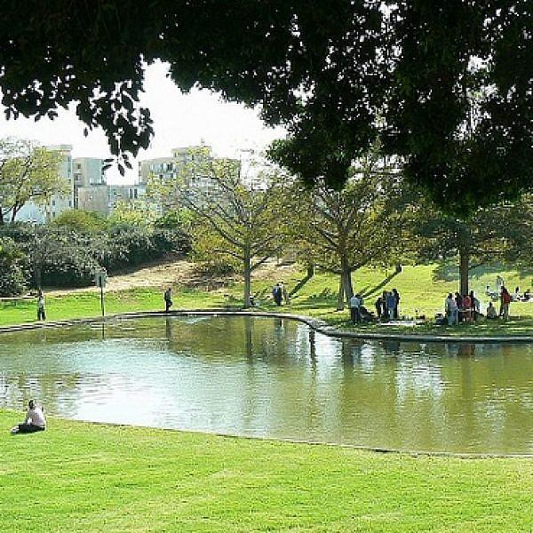 פארק וולפסון