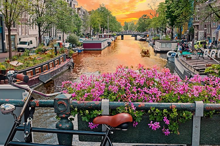 אמסטרדם. צילום: שאטרסטוק