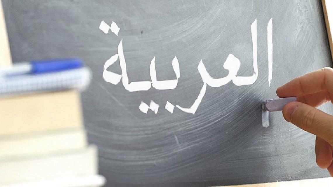 לומדים ערבית (צילום: shutterstock)