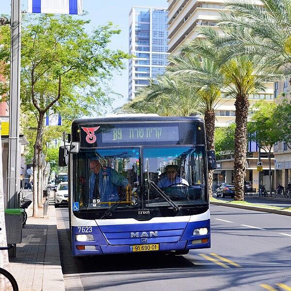 אוטובוס של דן (צילום: Shutterstock)