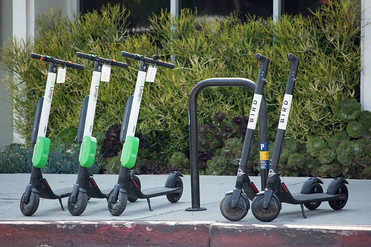 קורקינטים חשמליים של ווינד ובירד (צילום: Shutterstock)