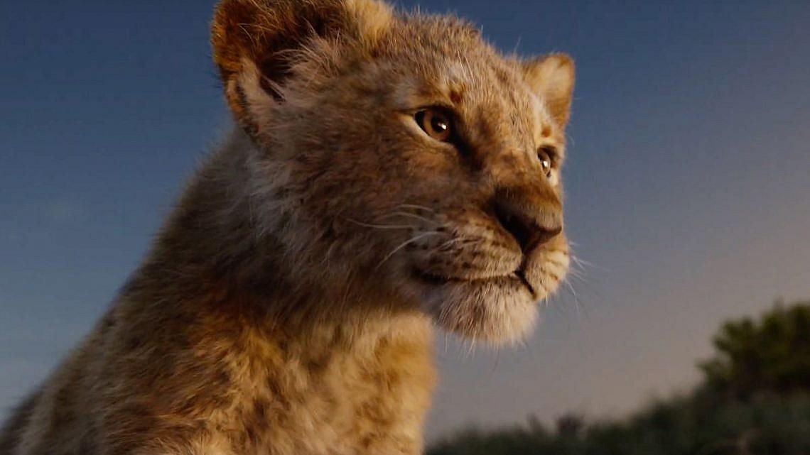"""""""מלך האריות"""" 2019"""