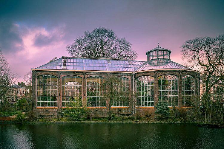 Hortus Botanicus באמסטרדם (צילום: Shutterstock)