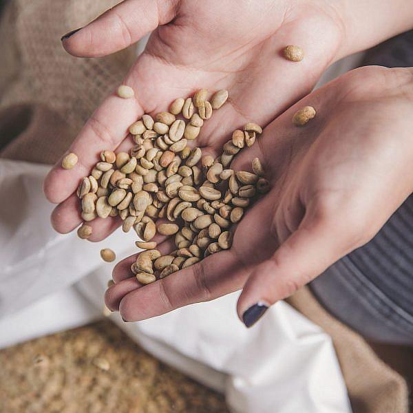 בונה בוטיק קפה. צילום: נופר לפיד