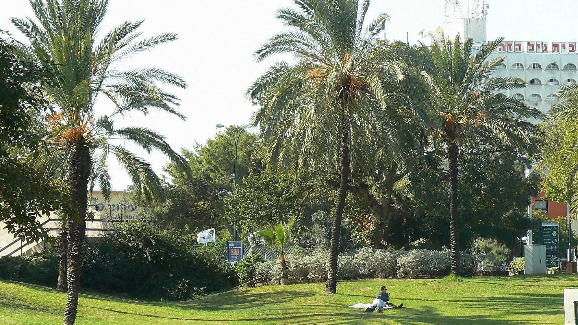 פארק וולפסון בשכונת רמת הטייסים