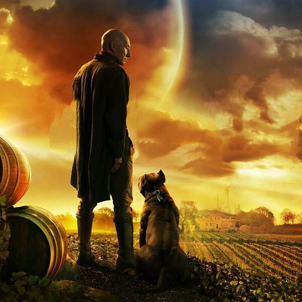 אדם זקן במאה ה-24, מה יש לו בחייו (חוץ מאחוזת כרמים וכלב ממש חמוד). ״סטאר טרק: פיקארד״