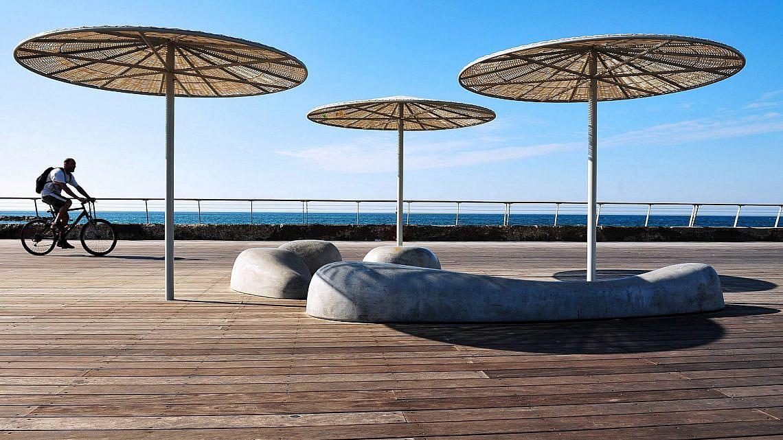 כמו כלבי ים משתזפים בשמש. מושבי הבטון בנמל תל אביב (צילום: Shutterstock)