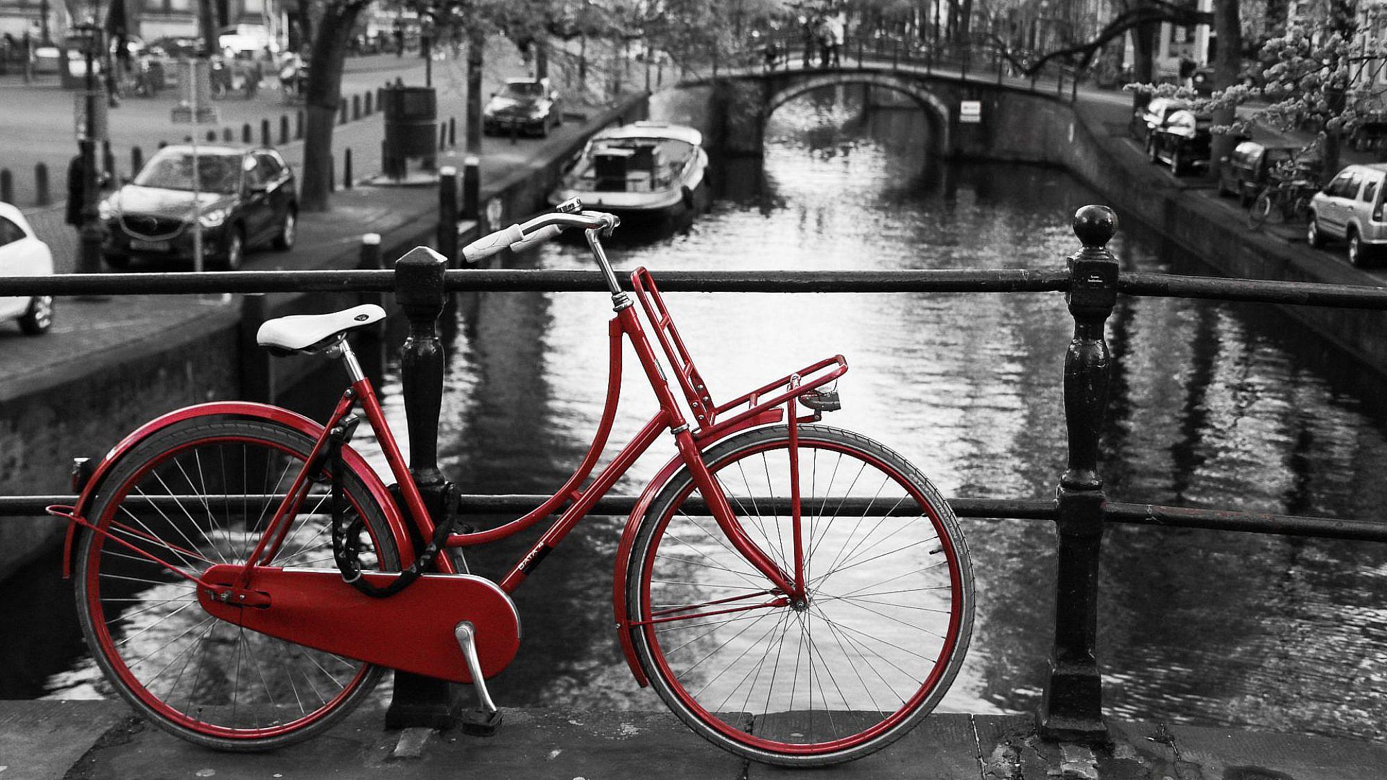מאות אלפי אמסטרדמים אינם טועים. אופני אבא (צילום: שאטרסטוק)