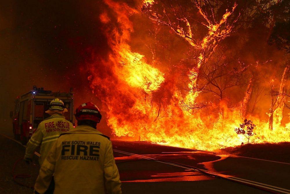 לצחוק ולא לשרוף. השריפות באוסטרליה, ינואר 2020 (צילום: Shutterstock)
