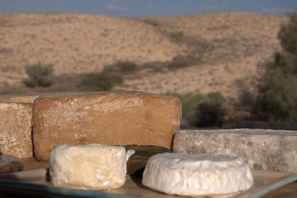 גבינות מחוות קורנמל (צילום: נורית שרת)
