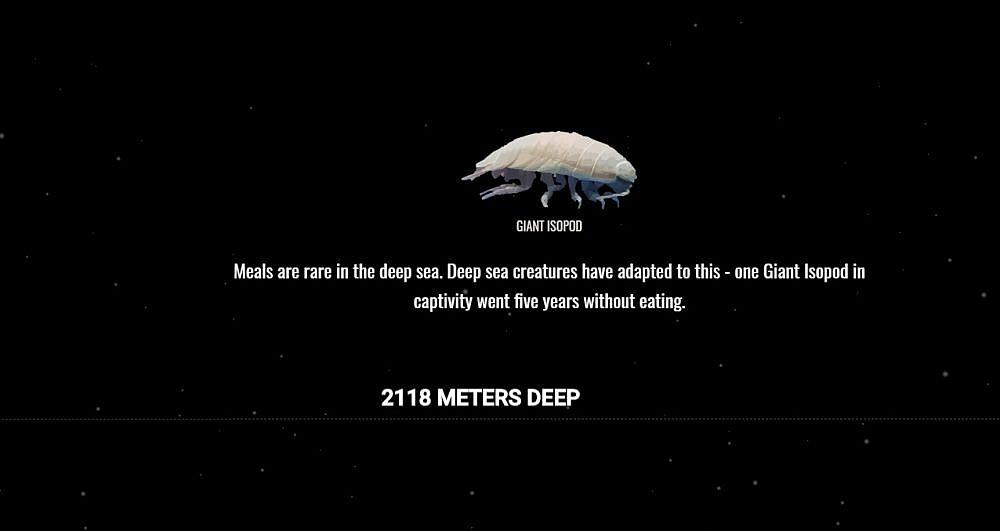 מה שיותר עמוק יותר סיוט. מתוך The Deep Sea