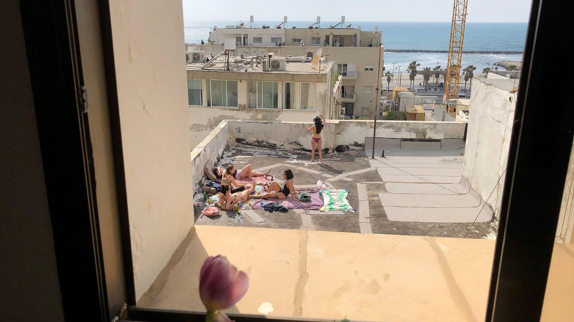 peeping flower. צילום: יעלי לוי טל, תל אביב