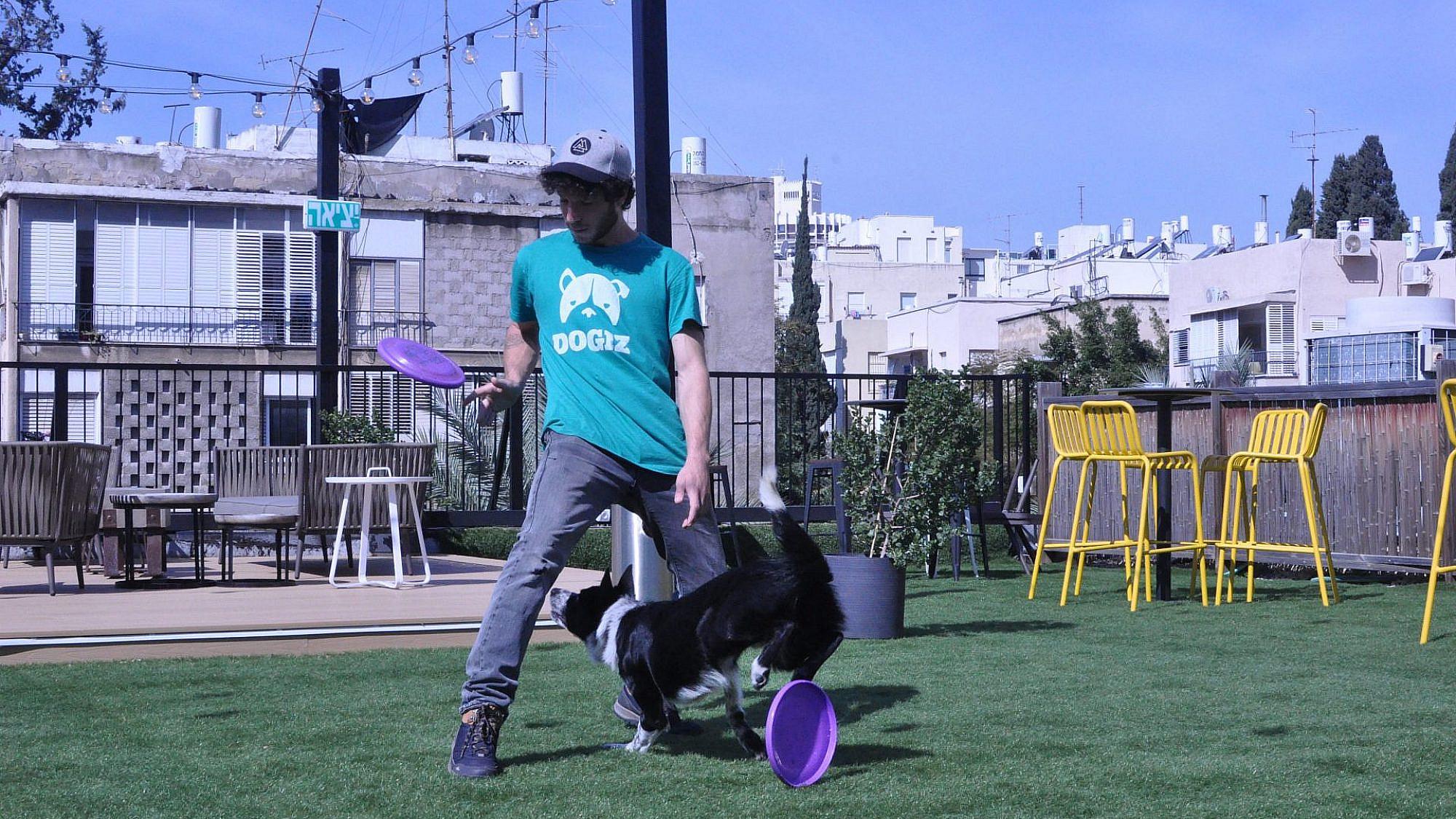 אימון ספורט כלבני (צילום: דנה מידן)