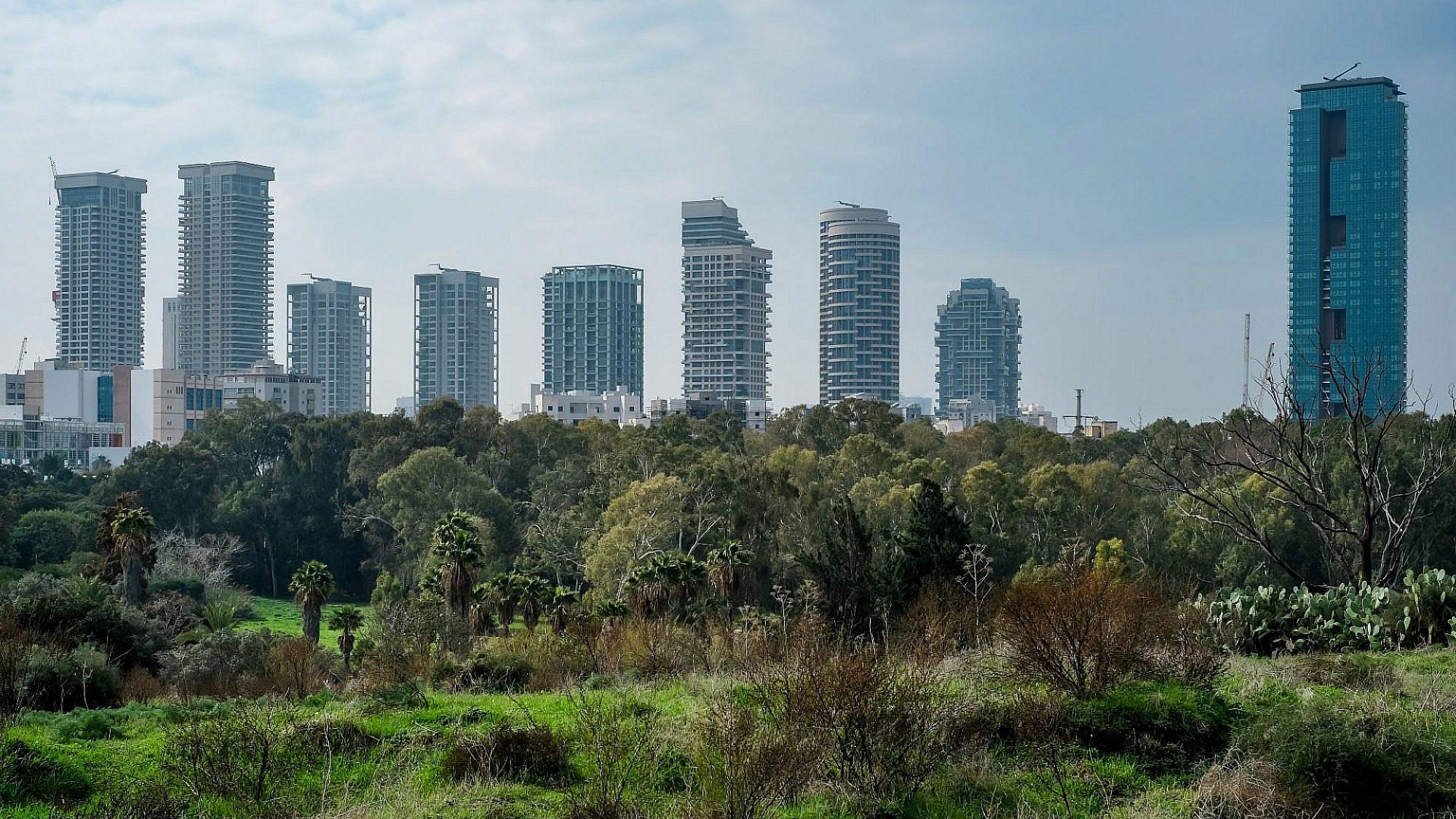 """הנדל""""ן תמיד מנצח את העצים. פארק הירקון (צילום: שאטרסטוק)"""