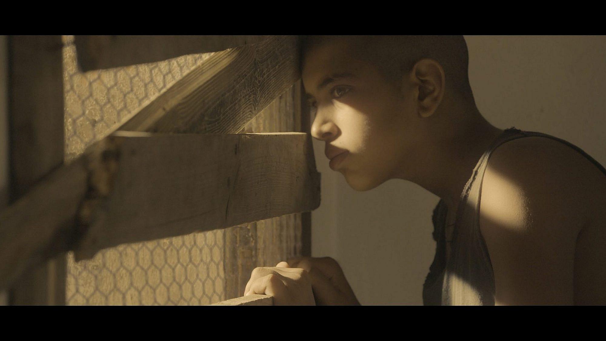 מתוך הסרט