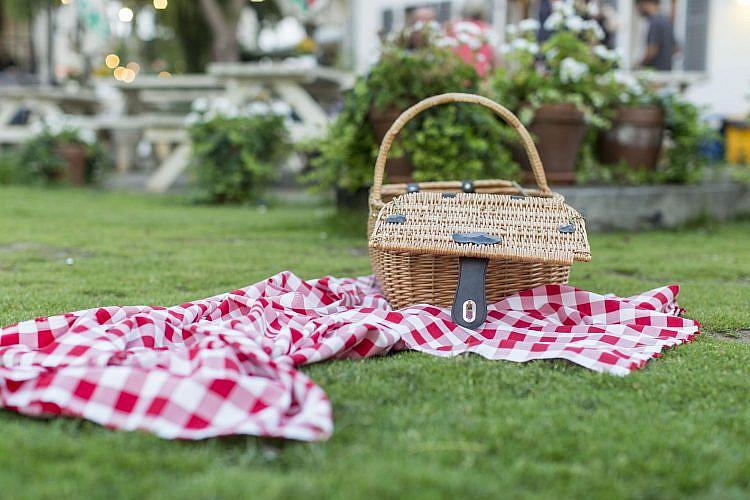 פיקניק בפארק שרונה (צילום: שאטרסטוק)