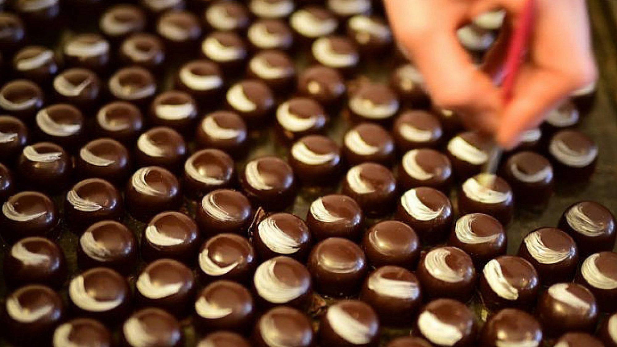 שוקולד של קרדינל. צילום: טלי טראב
