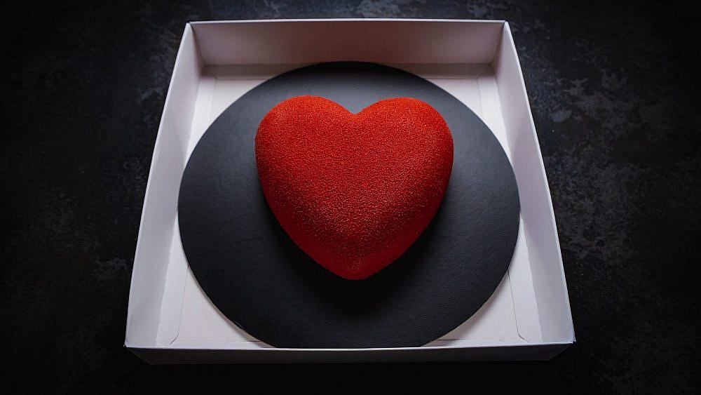 לב קטיפתי. שיר אזבי בקיטו קאטו (צילום: דימיטרי קנטר)