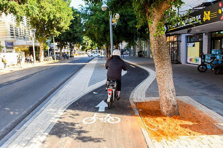 שביל אופניים בדיזנגוף לכיוון צפון. צילום: כפיר סיוון