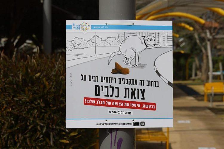 קצת שיימינג לא יזיק לכם. קמפיין עיריית תל אביב-יפו (צילום: גיא יחיאלי)