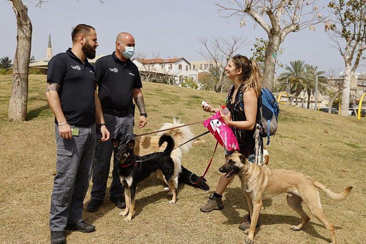 קצת פיקוח והסברה מוגברים לא יזיקו לכם. קמפיין עיריית תל אביב-יפו (צילום: גיא יחיאלי)