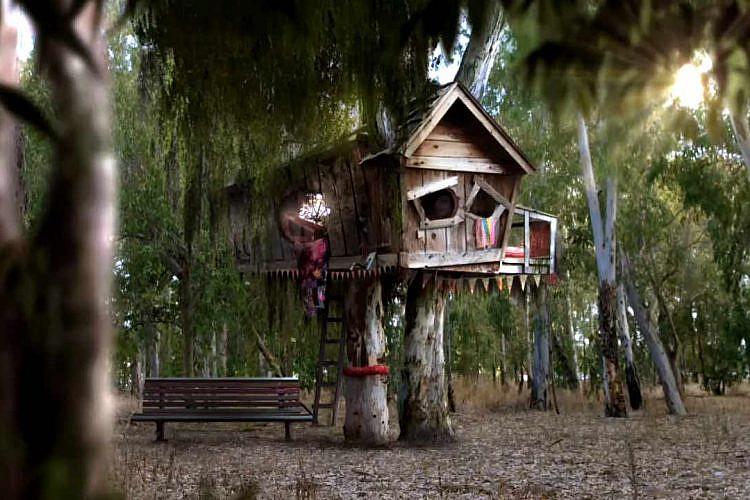 """""""ילדי בית העץ"""" (צילום מסך: כאן חינוכית)"""