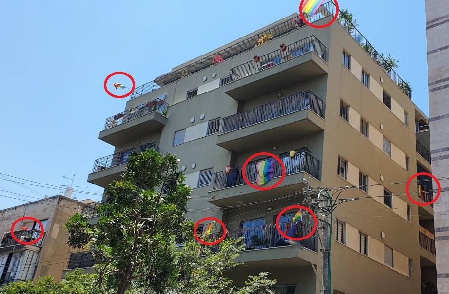 שבעה דגלי גאווה, ועוד אחרי מאחורי העץ. שכונת נווה שאנן בדרום תל-אביב, יוני 2021 (צילום: אורי וולטמן)