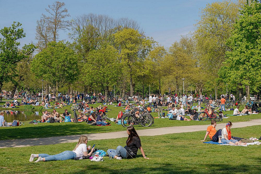 האמסטרדמים לא חושבים שהיא מספיק ירוקה. וונדל פארק, אמסטרדם (צילום: שאטרסטוק)